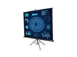 Ecran manuel ARCADIA 170 - dimensions de l'image 178 x 178 cm, toile blanc mat, carter noir et monté